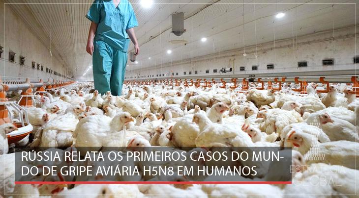 Rússia relata os primeiros casos do mundo de gripe aviária H5N8 em humanos